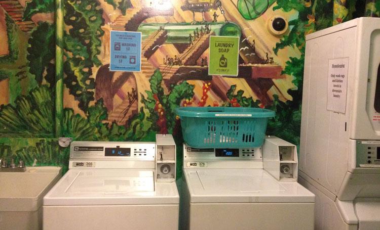 machine-laver-greentortoise