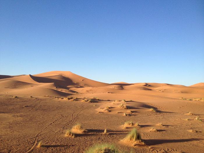 desert-dunes-afrique-maroc