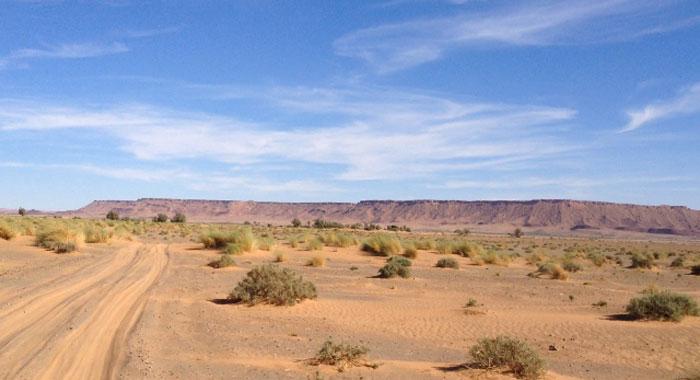 desert-maroc-violet