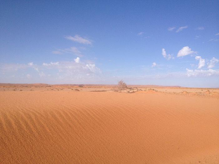 dune-maroc-afrique