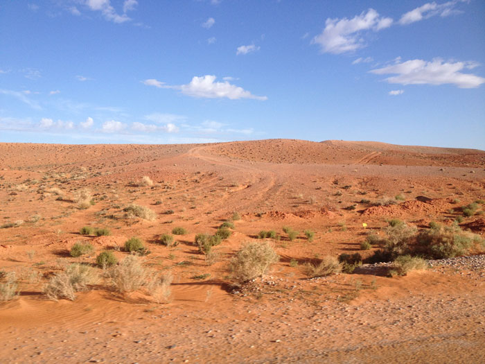 step-maroc-afrique
