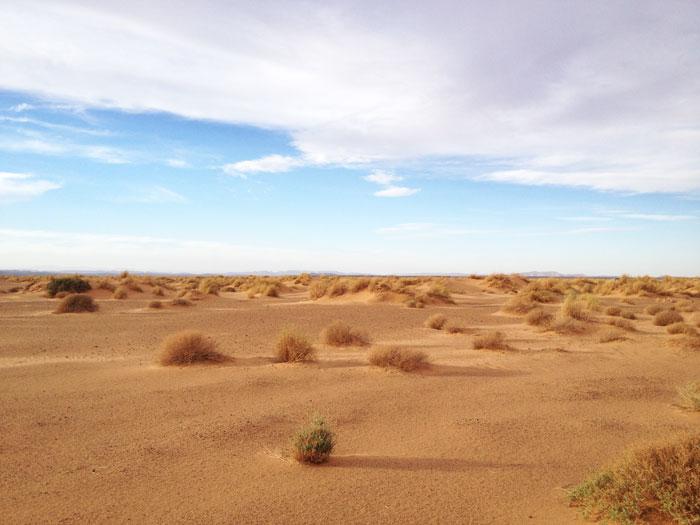 western-desert-maroc