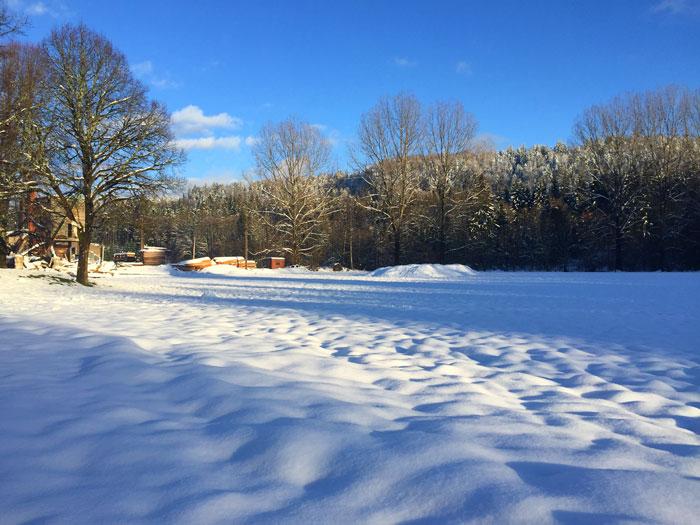 foret-neige-jura-soleil